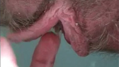 Hot bushes and hirsute pussies in sex videos